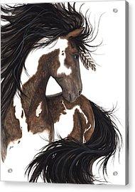 Majestic Dream Pinto Horse Acrylic Print