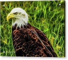 Majestic Eagle Acrylic Print by Joann Copeland-Paul