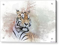 Acrylic Print featuring the photograph Majestic by Eva Lechner