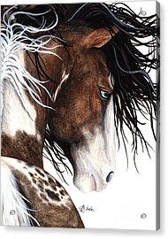 Majestic Pinto Horse 140 Acrylic Print