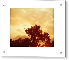 Majestic Sky Acrylic Print by Hal Newhouser