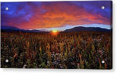 Majestic Sunset Over Cades Cove In Smoky Mountains National Park Acrylic Print