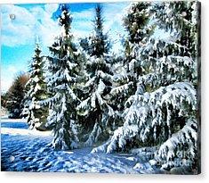 Majestic Winter In New England  Acrylic Print by Judy Palkimas