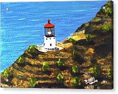 Makapuu Lighthouse #78, Acrylic Print by Donald k Hall