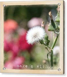 Make A Wish... Acrylic Print