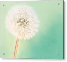 Make A Wish - Large Acrylic Print