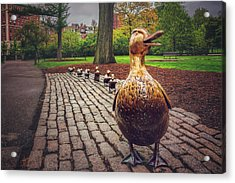 Make Way For Ducklings In Boston  Acrylic Print by Carol Japp