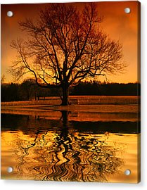 Making The Most Of Your Time Alone Acrylic Print by Daphne Sampson