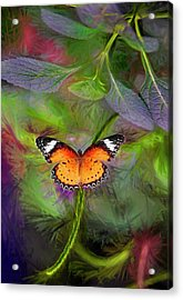 Malay Lacewing  What A Great Place Acrylic Print by James Steele