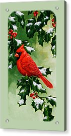 Male Cardinal And Holly Phone Case Acrylic Print by Crista Forest