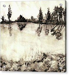 Malibu Lake Mono Print Acrylic Print by Randy Sprout