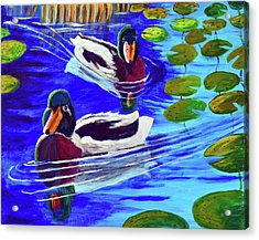 Mallards In The Pads Acrylic Print by Bob Crawford
