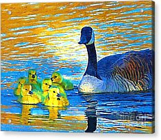 Mama And Her Goslings Acrylic Print by Deborah MacQuarrie-Selib