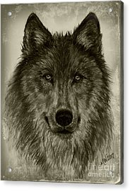 Mama Wolf Vintage Acrylic Print by Michelle Wolff