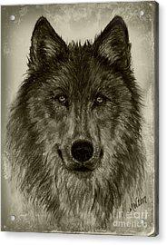 Mama Wolf Vintage Acrylic Print