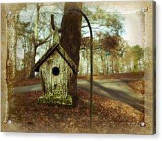 Mamaw's Birdhouse Acrylic Print by Steven Michael