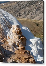 Mammoth Hot Springs  Acrylic Print