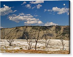 Acrylic Print featuring the photograph Mammoth Springs Sentinels by Charles Kozierok