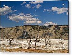 Mammoth Springs Sentinels Acrylic Print by Charles Kozierok