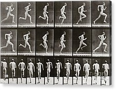 Man Running, Plate 62 From Animal Locomotion, 1887 Acrylic Print