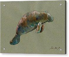 Manatee Watercolor Art Acrylic Print