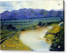 Manati River Acrylic Print by Gladiola Sotomayor