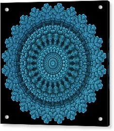 Acrylic Print featuring the digital art Mandala For The Masses by Lyle Hatch