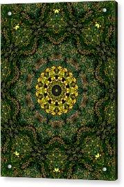 Mandala Kaleidoscopic Design 15 Acrylic Print by Lanjee Chee