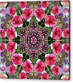 Acrylic Print featuring the digital art Mandala Pink Patron by Nancy Griswold