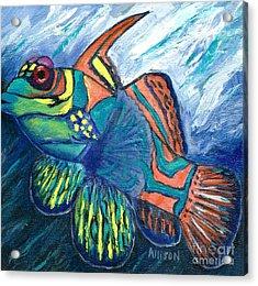 Mandarinfish Acrylic Print