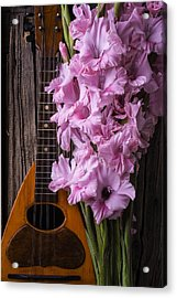Mandolin And Glads Acrylic Print