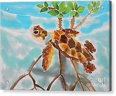 Mangrove Baby Turtle Acrylic Print