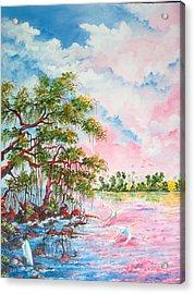 Mangroves Acrylic Print by Dennis Vebert