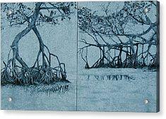 Mangroves Acrylic Print by Leah  Tomaino