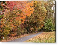 Manhan Rail Trail Fall Colors Acrylic Print