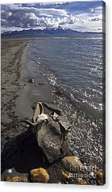 Mani Stone At Lake Manasarovar - Tibet Acrylic Print by Craig Lovell