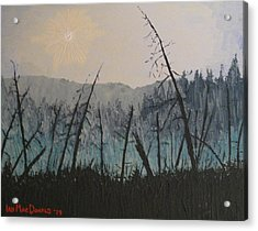 Acrylic Print featuring the painting Manitoulin Beaver Meadow by Ian  MacDonald