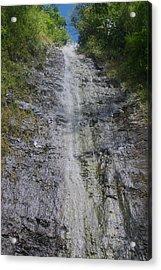 Manoa Falls Acrylic Print