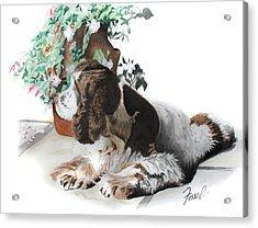 Mans Best Friend Acrylic Print by Ferrel Cordle