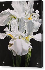 Many Shades Of White Acrylic Print by Alfred Ng