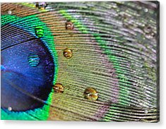 Acrylic Print featuring the photograph Many Water Drops by Angela Murdock