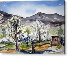 Acrylic Print featuring the painting Manzanar Orchard by Pat Crowther