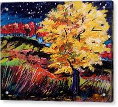 Maple At Night Acrylic Print by John Williams