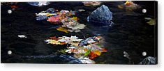 Maple Leaves-0005 Acrylic Print by Sean Shaw
