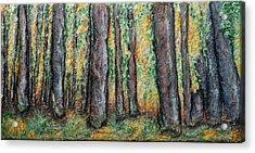 Maple Trees Acrylic Print by Alison  Galvan