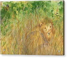 Acrylic Print featuring the painting Mara The Lioness by Vicki  Housel