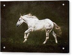 Marble Horse Acrylic Print