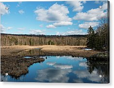 March Afternoon At Black Creek Acrylic Print