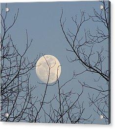 March Moon Acrylic Print