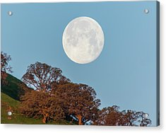 Acrylic Print featuring the photograph March Moonset by Marc Crumpler